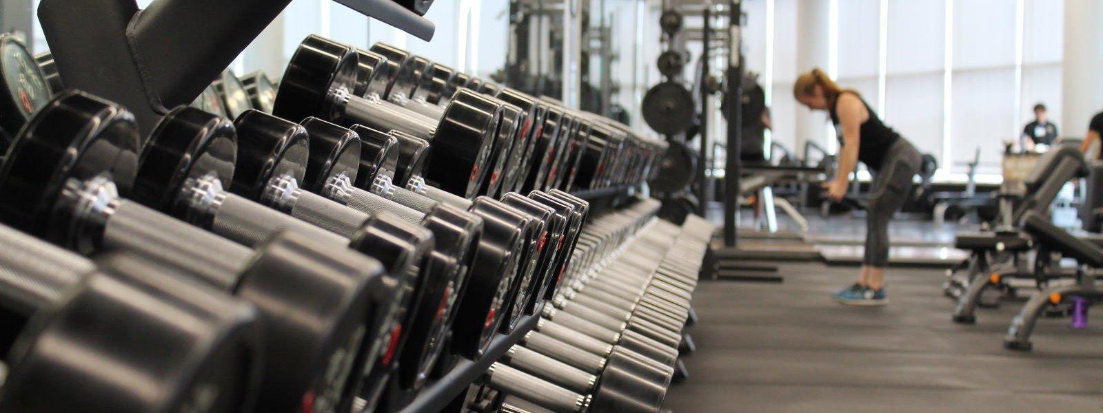 SEO Case Study Pinnacle Fitness